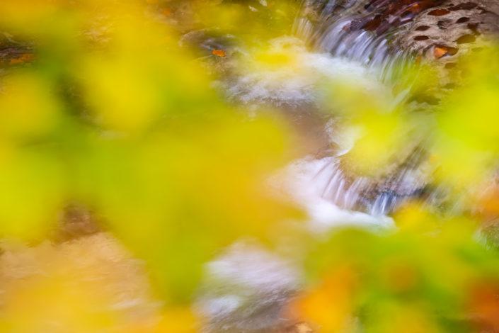 Sorgenti dell'Aniene in autunno - Monti Simbruini