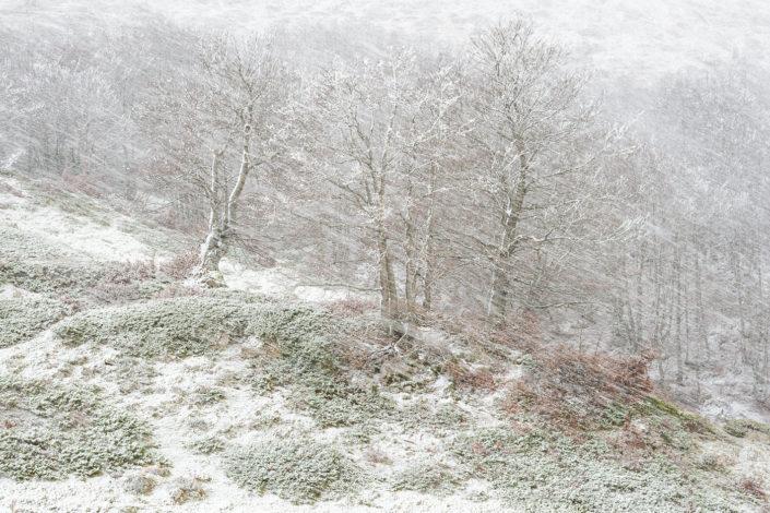 Prima neve - Monti Simbruini