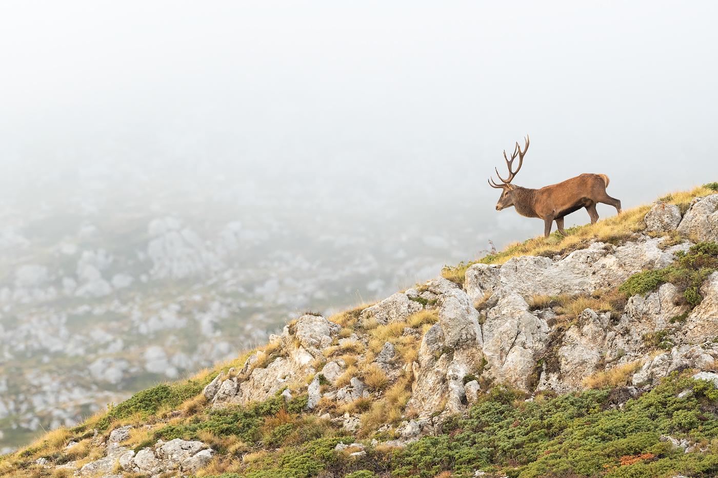 Atmosfere autunnali aleggiano sui crinali del Monte velino