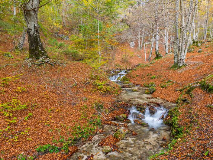 Risalendo le sorgenti dell'Aniene in autunno - Monti Simbruini